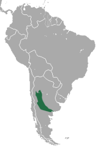 Geographic range of the Pink Fairy Armadillo.
