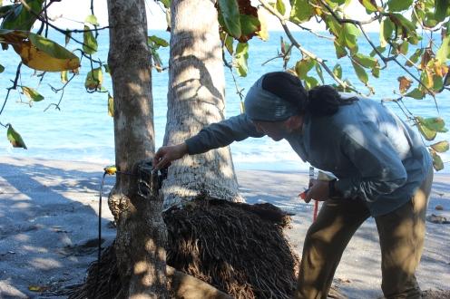 Brendan testing out a camera trap on the beach (PC: Brendan Barrett)