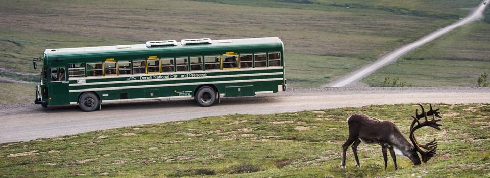 road-ecology-header-960x350