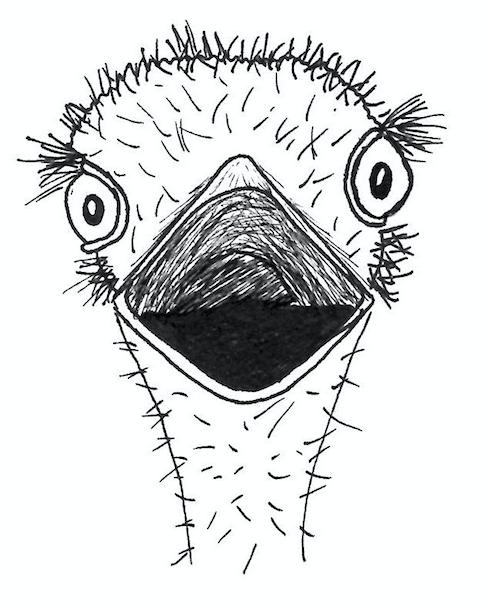 SS_ostrich roar