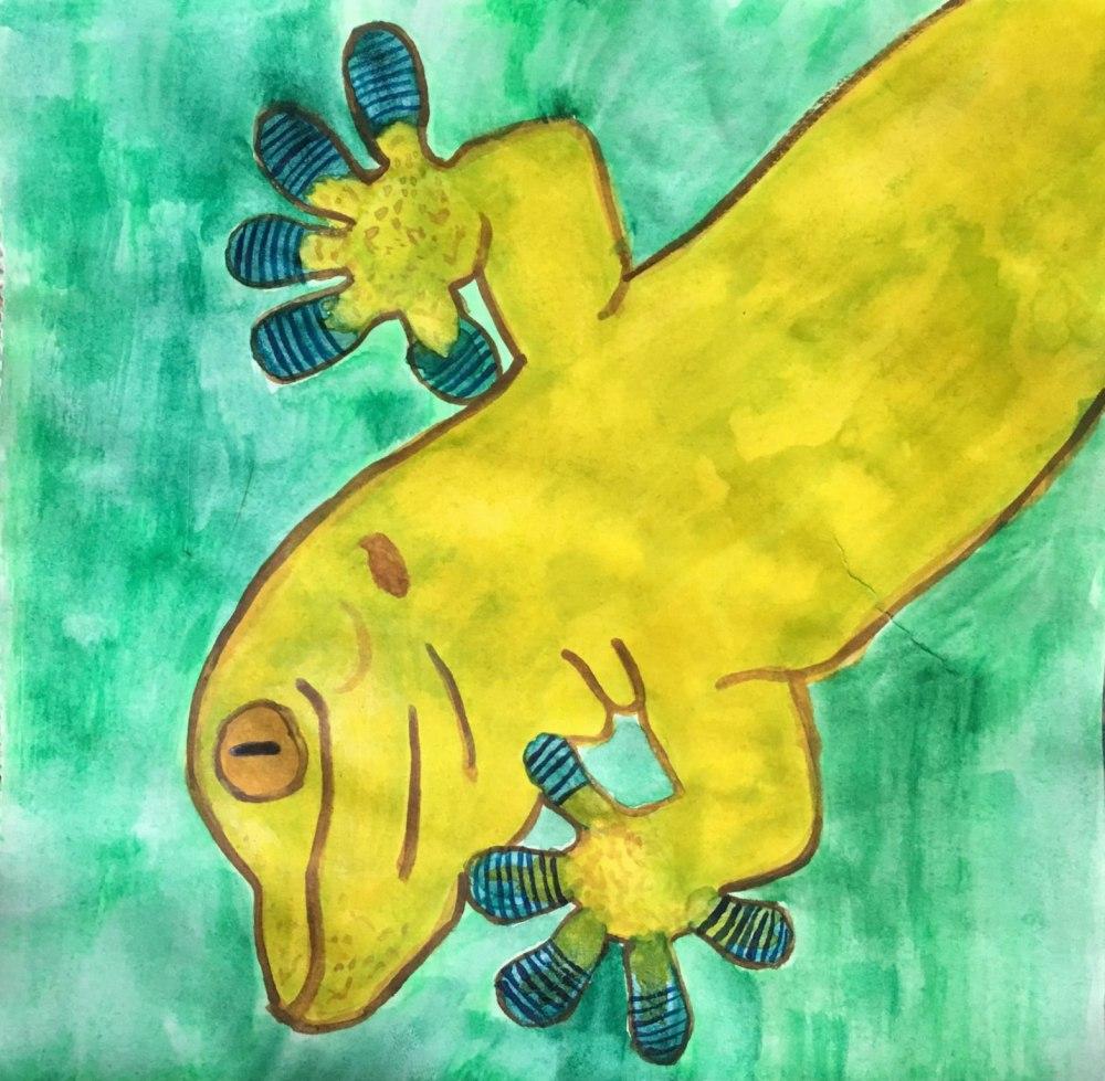 SS KChudeau Gecko