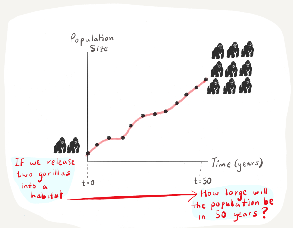 A drawing of a graph with population size on the y axis and time in years on the x axis. At time t = 0, if we release two gorillas into a habitat, how large will the population be in 50 years? tiny icons of gorillas and an increasing trend line on the plot.